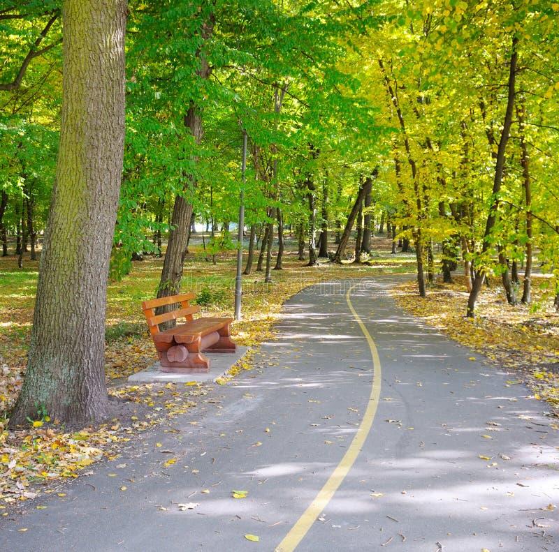Jesień krajobraz w parku obraz royalty free