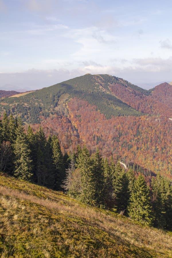 Jesień krajobraz w parku narodowym Mala Fatra, Sistani obrazy stock