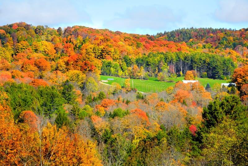 Jesień krajobraz w Vermont fotografia royalty free