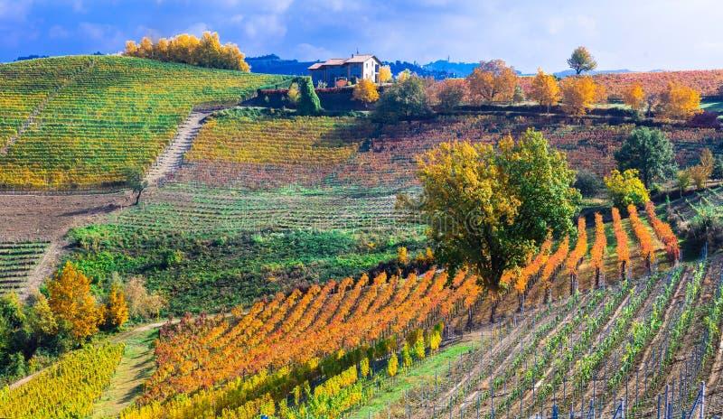 Jesień krajobraz winnicy i sceniczna wieś Piemonte, fotografia stock