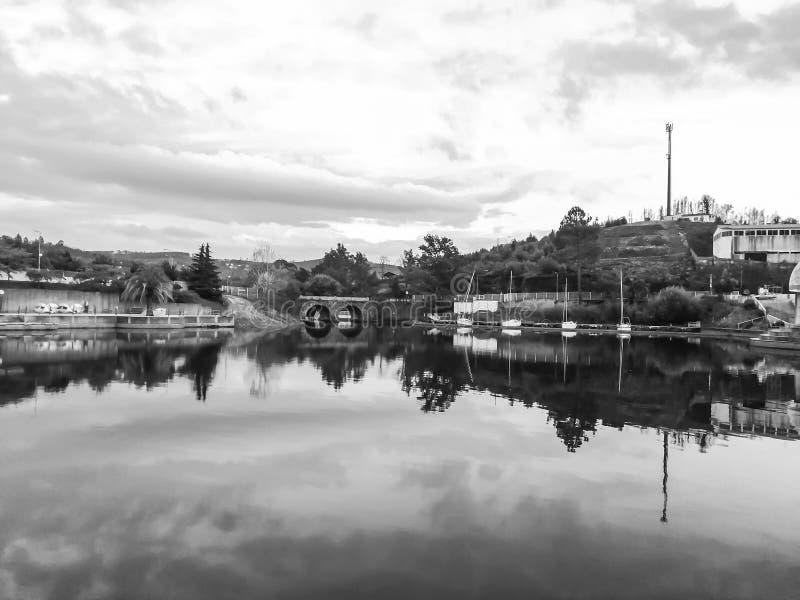 Jesień krajobraz z drzewami w czarny i biały zdjęcia royalty free