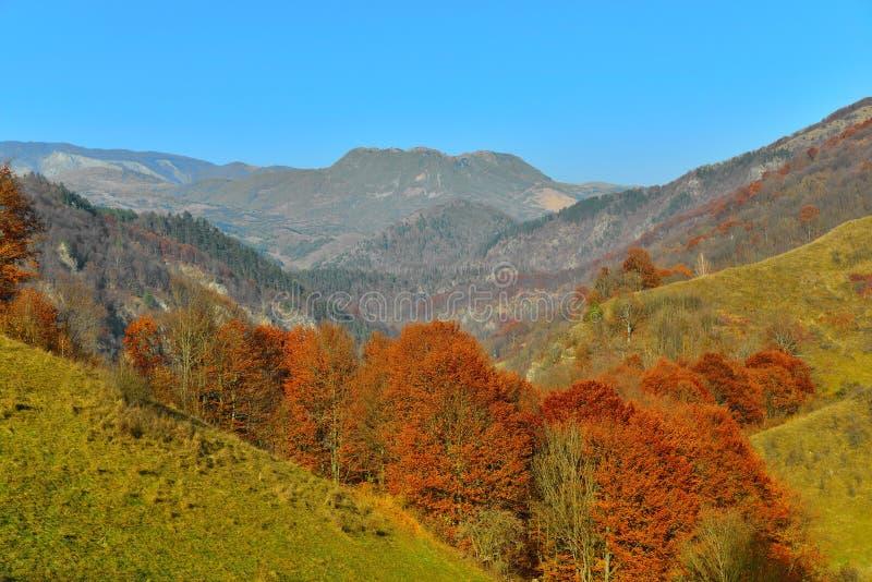 Jesień krajobraz z górą, łąką i lasem, obraz royalty free