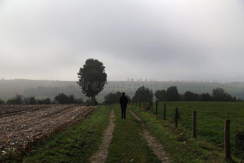 Jesień krajobraz z mgłową pogodą nad wykorzeniającym polem obrazy stock