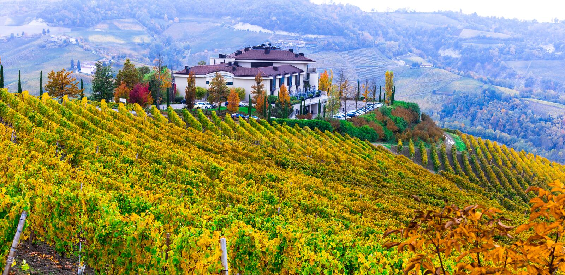 Jesień krajobraz z winnicami w Podgórskim Włochy zdjęcie royalty free
