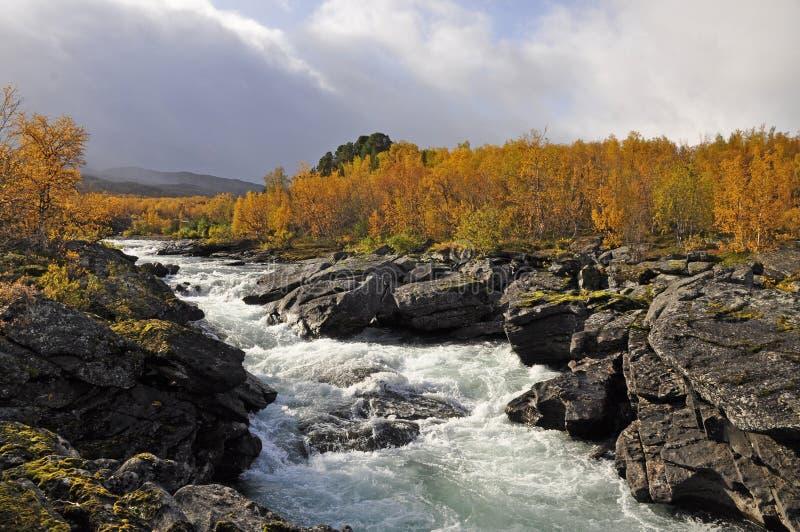 jesień krajobrazowy Sweden zdjęcie royalty free
