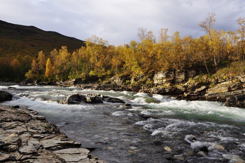 jesień krajobrazowy Sweden obrazy royalty free