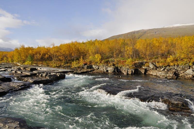 jesień krajobrazowy Sweden obraz royalty free