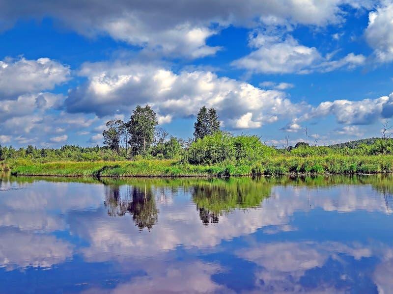 Jesień las odbijający w lasowym jeziorze Złota jesień Odbicie niebo w wodzie Ostatni ciepli jesień dni lata indyjski obraz stock