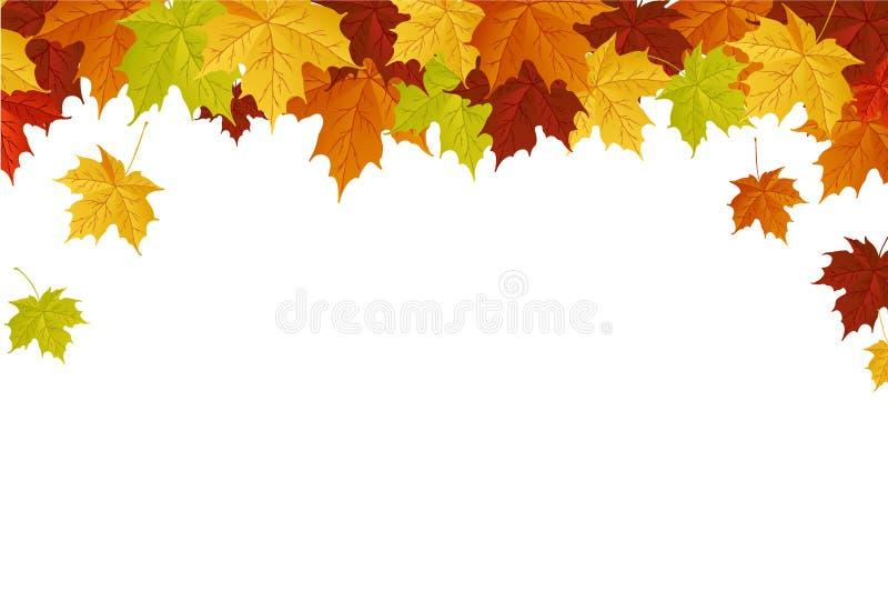 jesień liść ilustracja wektor