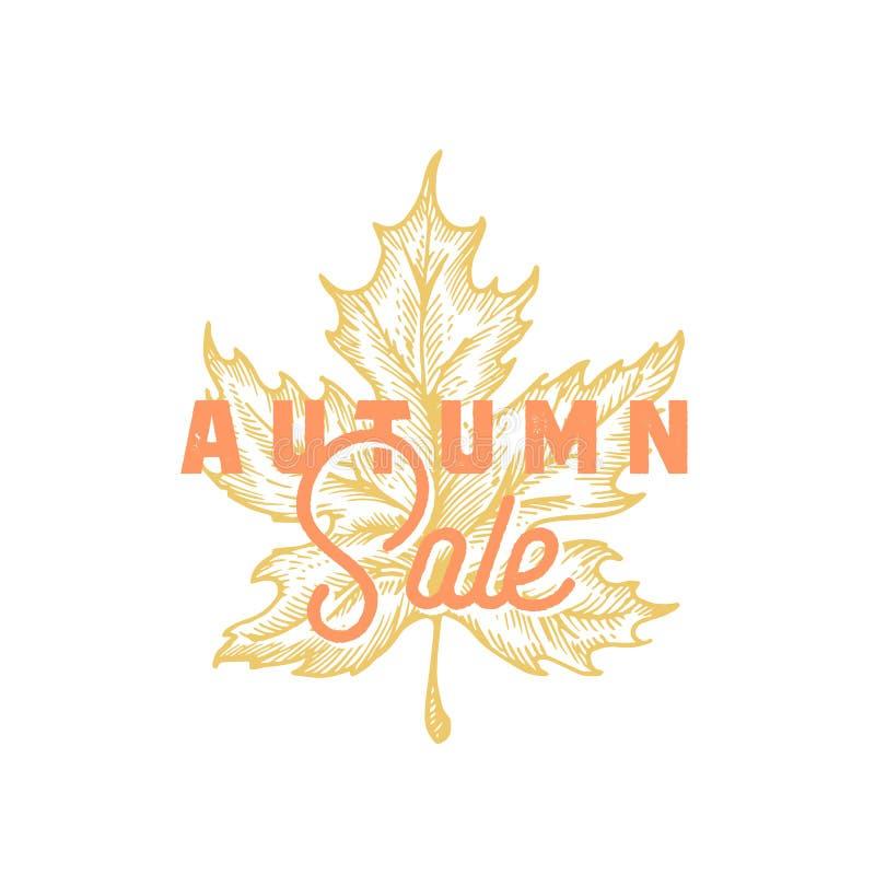 jesień liść czerwony sprzedaży słowo Abstrakcjonistyczny Wektorowy Retro etykietki, znaka lub karty szablon, Ręka Rysująca liścia ilustracja wektor