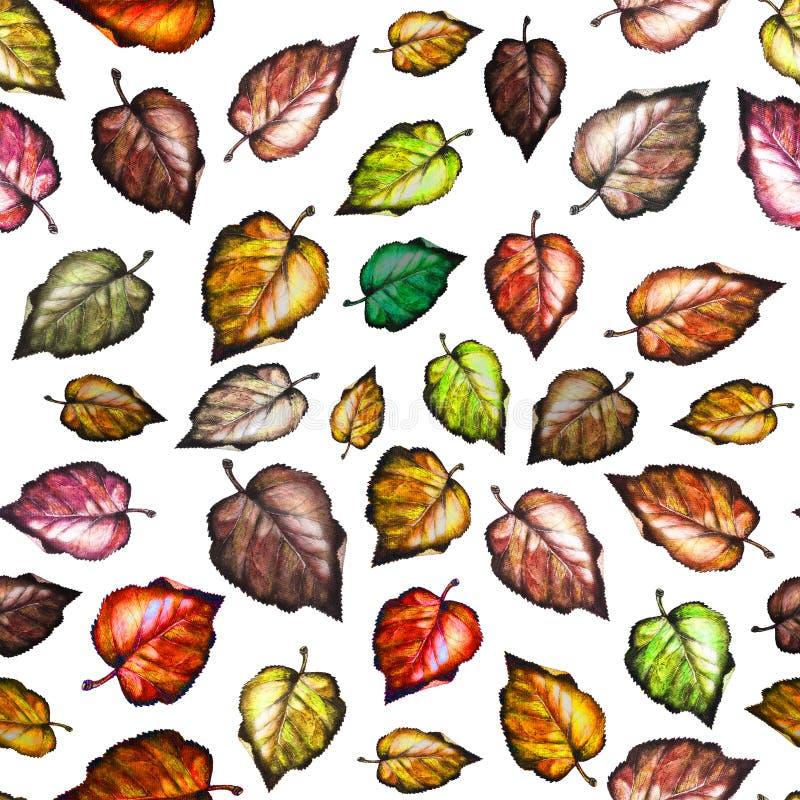 jesień liść deseniują bezszwowego akwarela _ royalty ilustracja