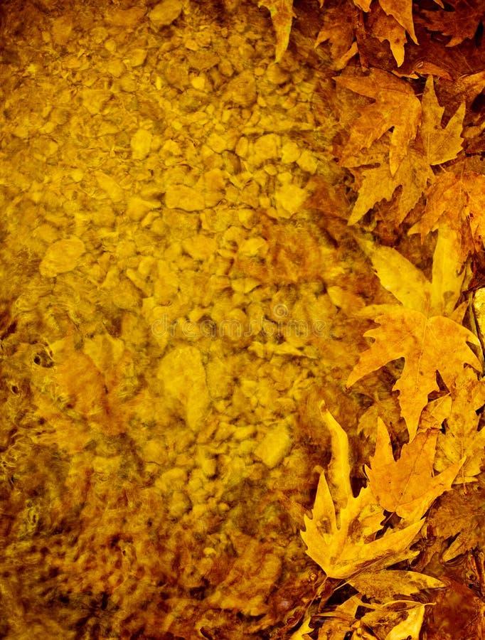 Jesień liść granica zdjęcia stock