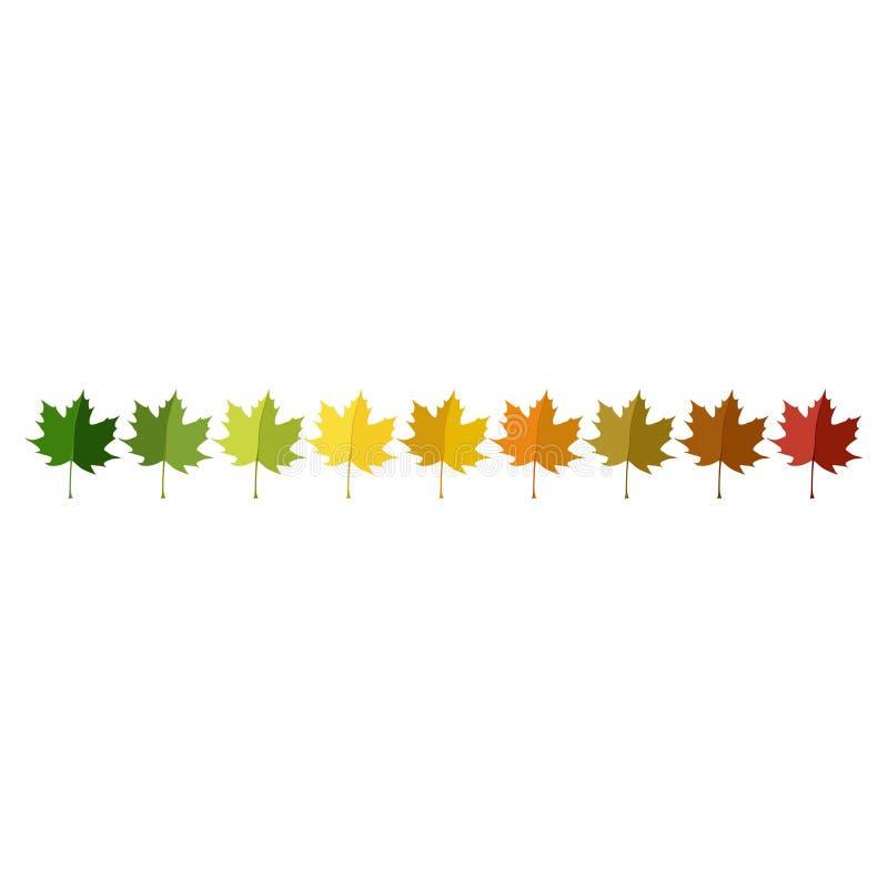 Jesień liść ustawia ustawionego w kolor palecie w rzędzie royalty ilustracja