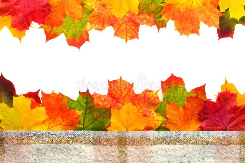 Jesień liści granica obraz stock