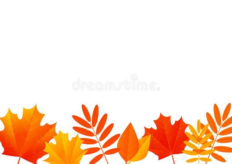Jesień liści granica ilustracja wektor