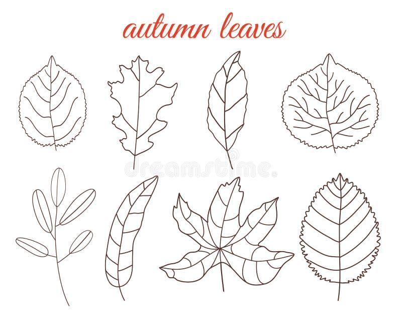 Jesień liści kreskowej sztuki set, odizolowywający na białym tle prosty kreskówki mieszkania styl, wektorowa ilustracja royalty ilustracja