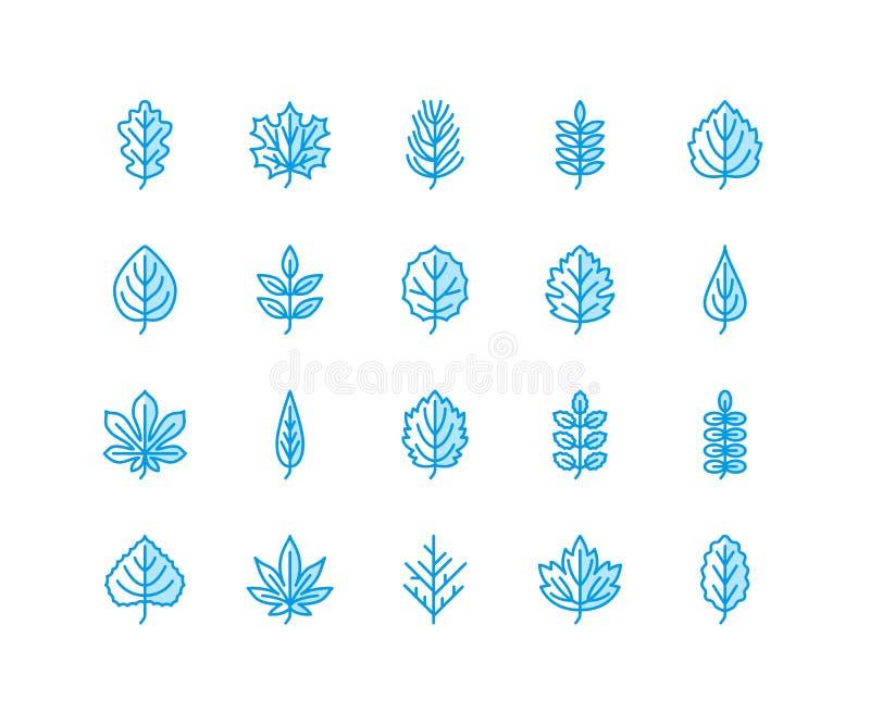 Jesień liści mieszkania linii ikony Liść pisać na maszynie, rowan, brzozy drzewo, klon, kasztan, dąb, cedrowa sosna, lipowa, guel ilustracji