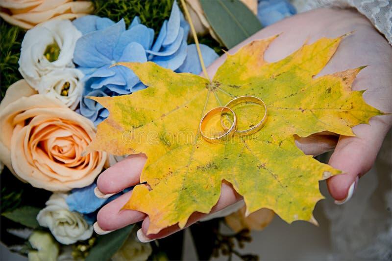 Jesień liścia obrączki ślubne zdjęcia stock