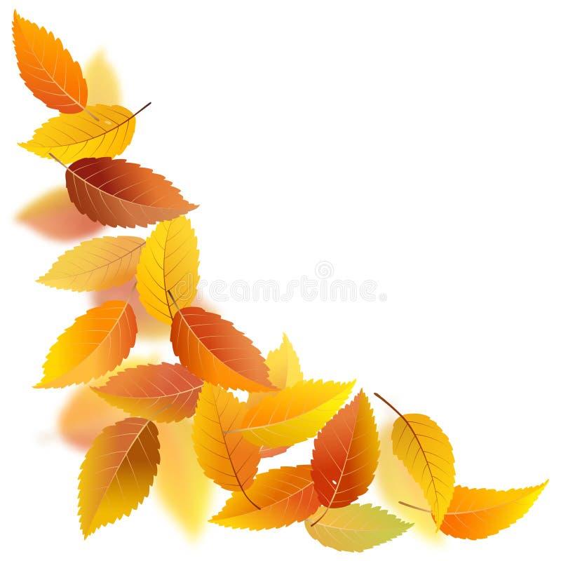 Jesień liście ilustracja wektor