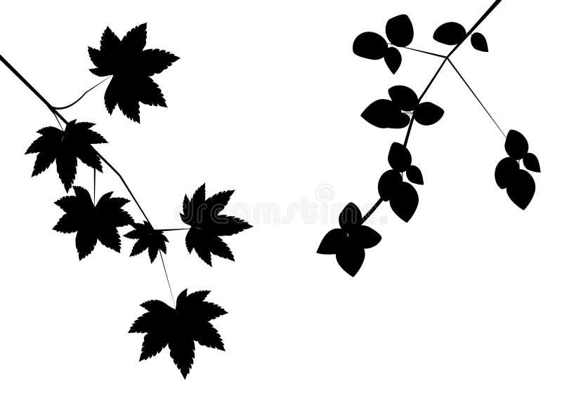 jesień liście royalty ilustracja