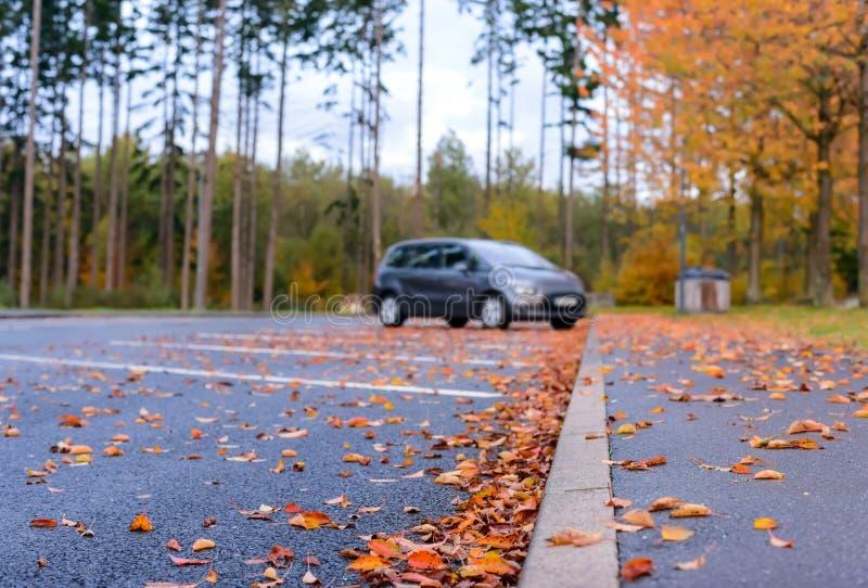 Jesień liście kłama w parking zdjęcia stock