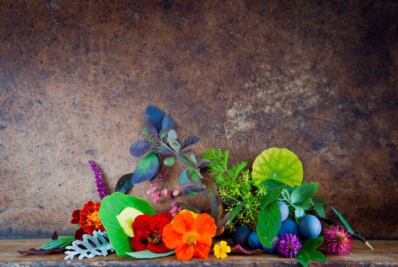 Jesień liście, kwiaty, jagody fotografia stock