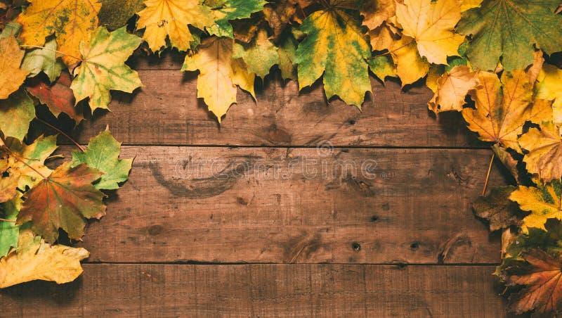 Jesień liście na ciemnym drewnianym tle obraz stock