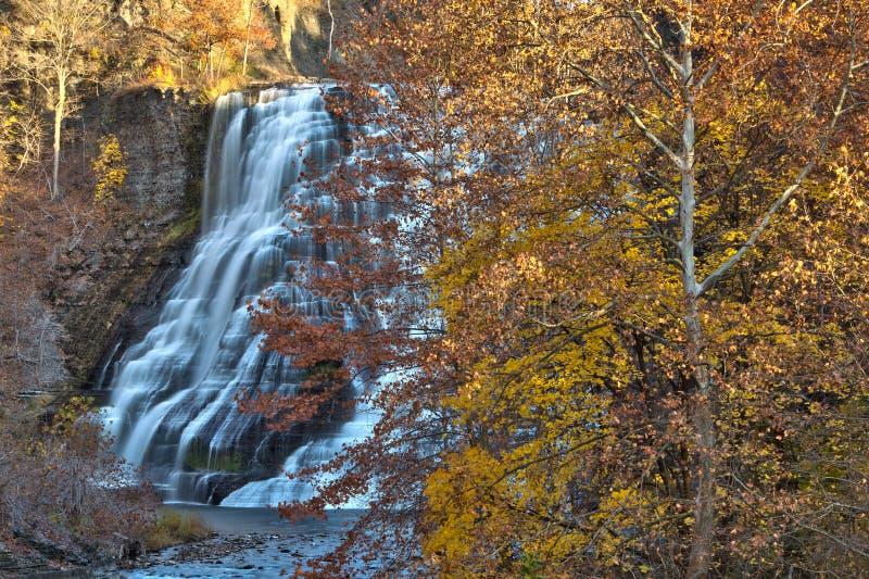Jesień liście przy Ithaca spadają w wiejskim Nowy Jork zdjęcie royalty free