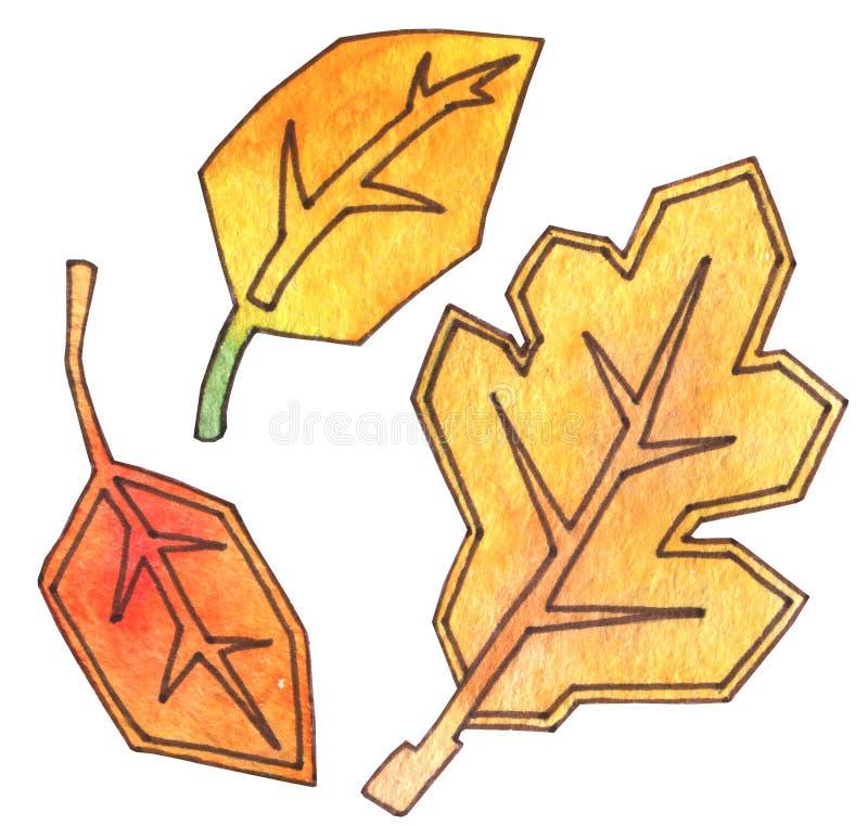 Jesień liście są żółci i pomarańczowi Ręki rysunkowa akwarela z konturem jab?ka ogrodowego zmielonego ?niwa dojrza?y czas drzewo  royalty ilustracja