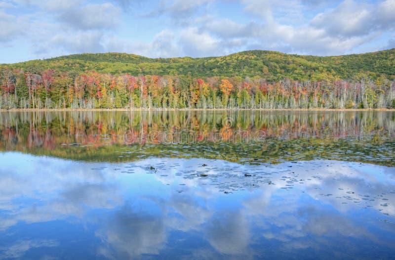 jesień linia brzegowa zdjęcia royalty free