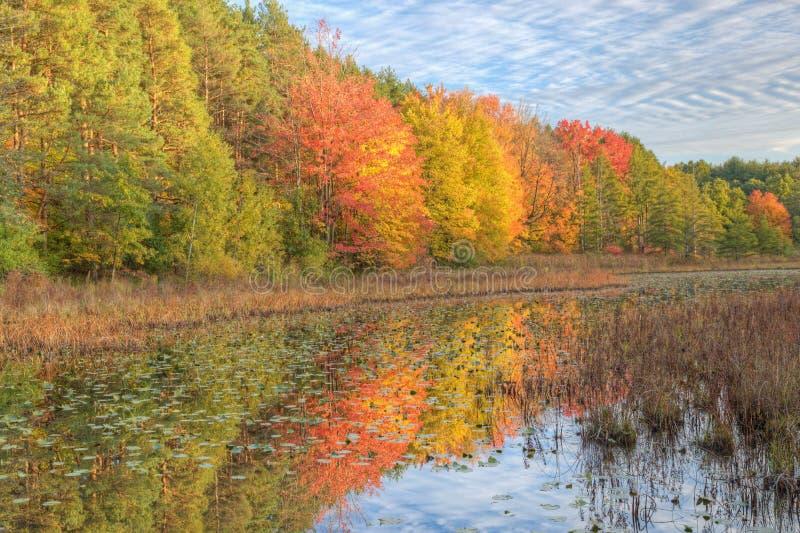 jesień linia brzegowa obrazy royalty free