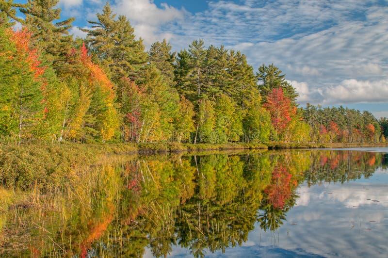 jesień linia brzegowa obrazy stock