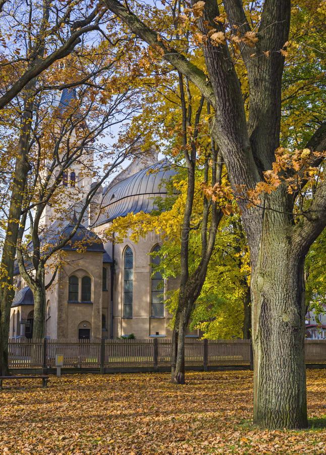 Jesień markotny park fotografia royalty free