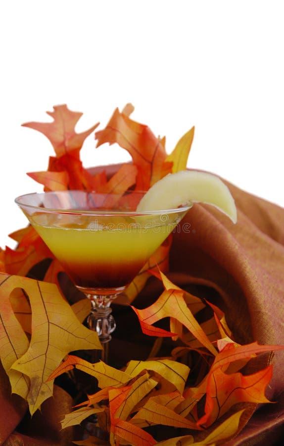 jesień Martini zdjęcia royalty free