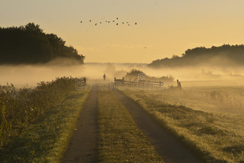 Jesień mgły biegacz obrazy royalty free