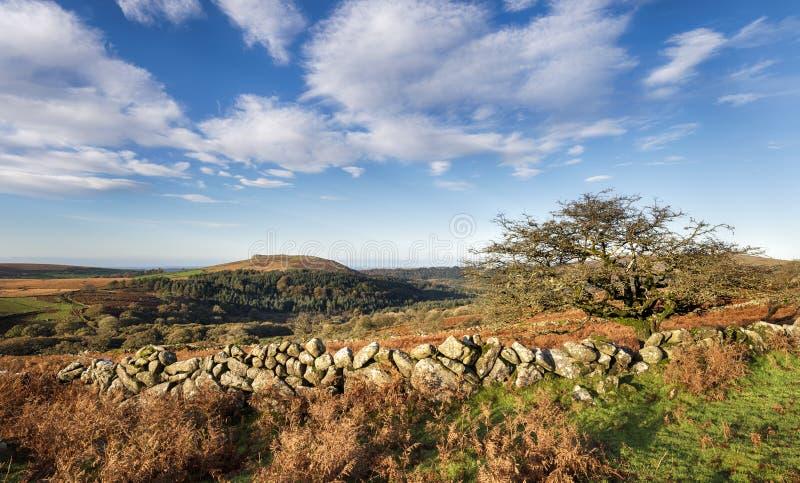 Jesień na Dartmoor zdjęcia stock