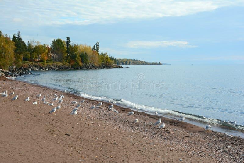 Jesień Na Jeziornym Wyższym Północnym brzeg obrazy stock