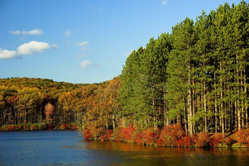 jesień, nowy jork obrazy stock