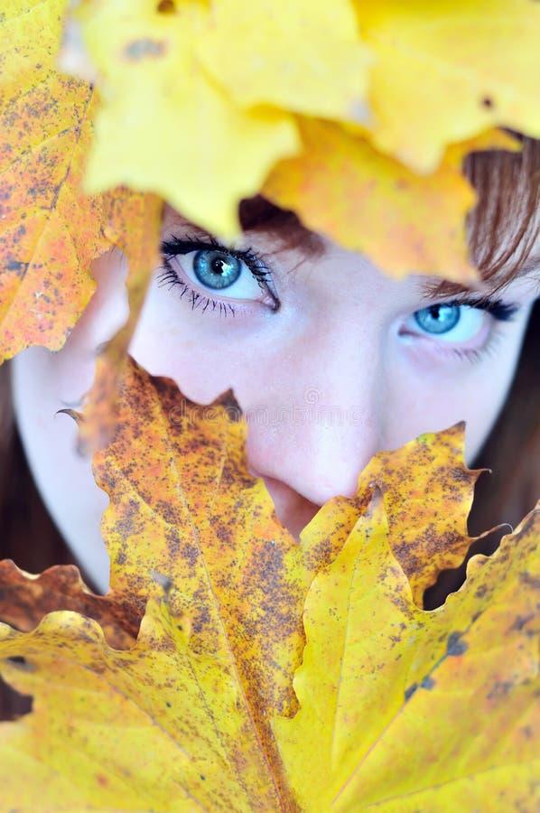 jesień oczy obraz royalty free