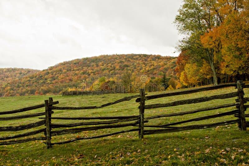 jesień ogrodzenia paśnik fotografia royalty free
