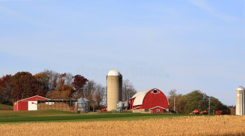 jesień opóźniony rolny obrazy stock