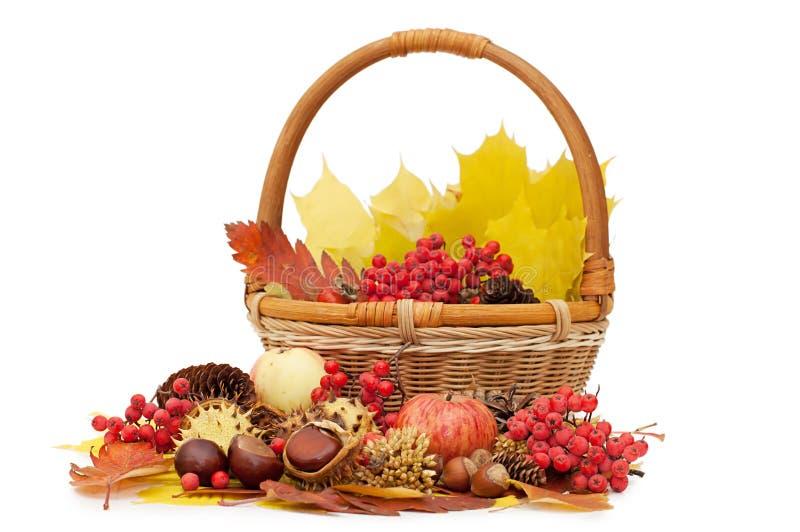 Jesień owoc liść i obraz royalty free