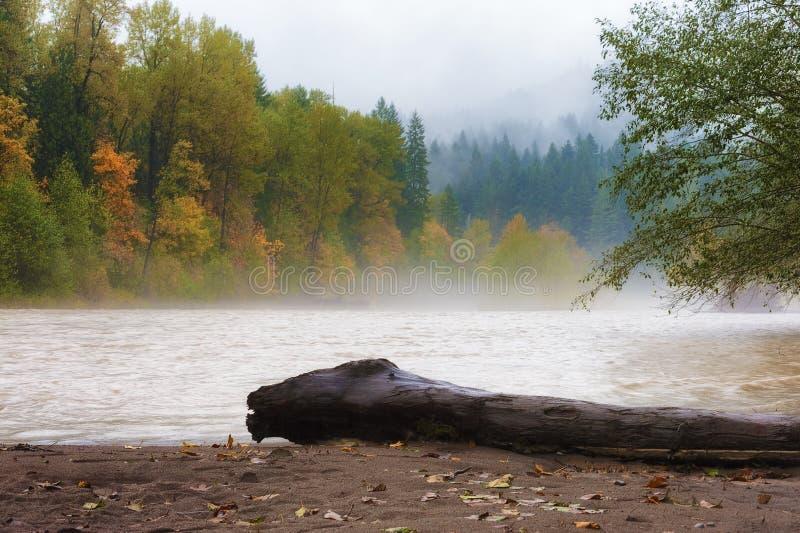 Jesień Pada wzdłuż Piaskowatej rzeki zdjęcie stock