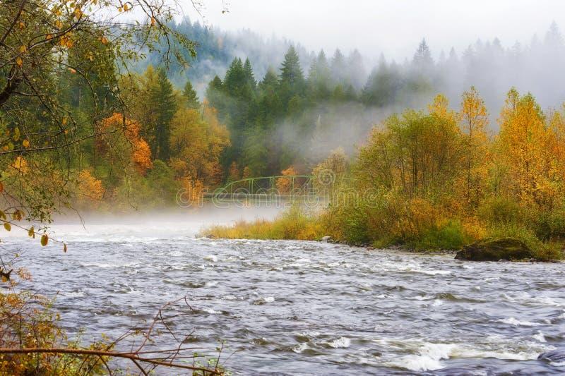 Jesień Pada wzdłuż Piaskowatej rzeki fotografia stock