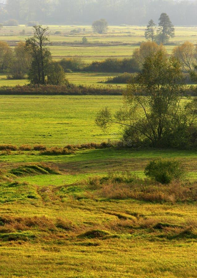 Jesień panoramiczny krajobraz drewna i łąki w Liwiec rzecznej dolinie w Polska zdjęcia stock