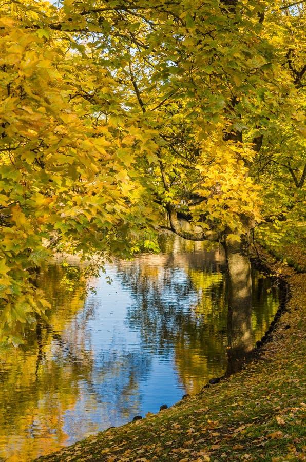 Jesień park przy kanałem w Ryskim fotografia stock