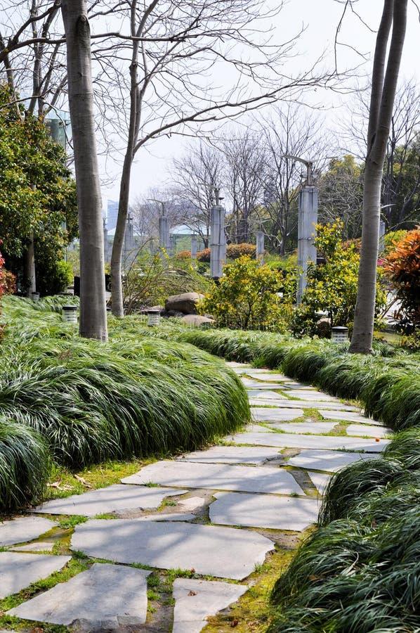 Jesień park w ranku w chmurnej pogodzie Obrazek jesieni park Wrześni krajobrazy w parku Chmurząca pogoda Parkowe aleje zdjęcie royalty free