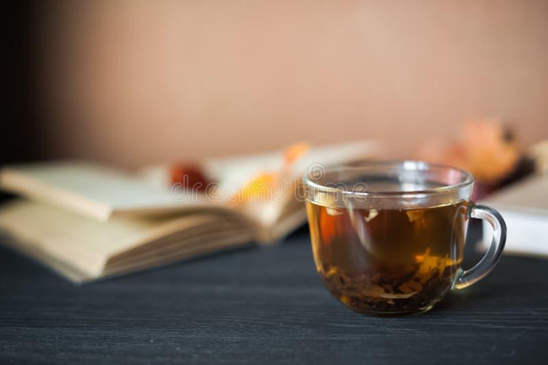 jesień pojęcia odosobniony biel Herbata w przejrzystym kubku, wyjawionej książka, jesień liście, świerczyn gałąź, rożki i kasztan zdjęcia stock