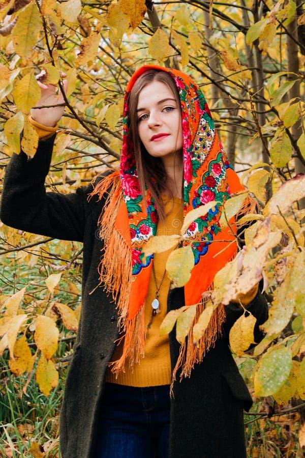 Jesień portret, młoda piękna dziewczyna z długie włosy w Rosyjskim szaliku i koloru żółtego ulistnienie, zdjęcia royalty free