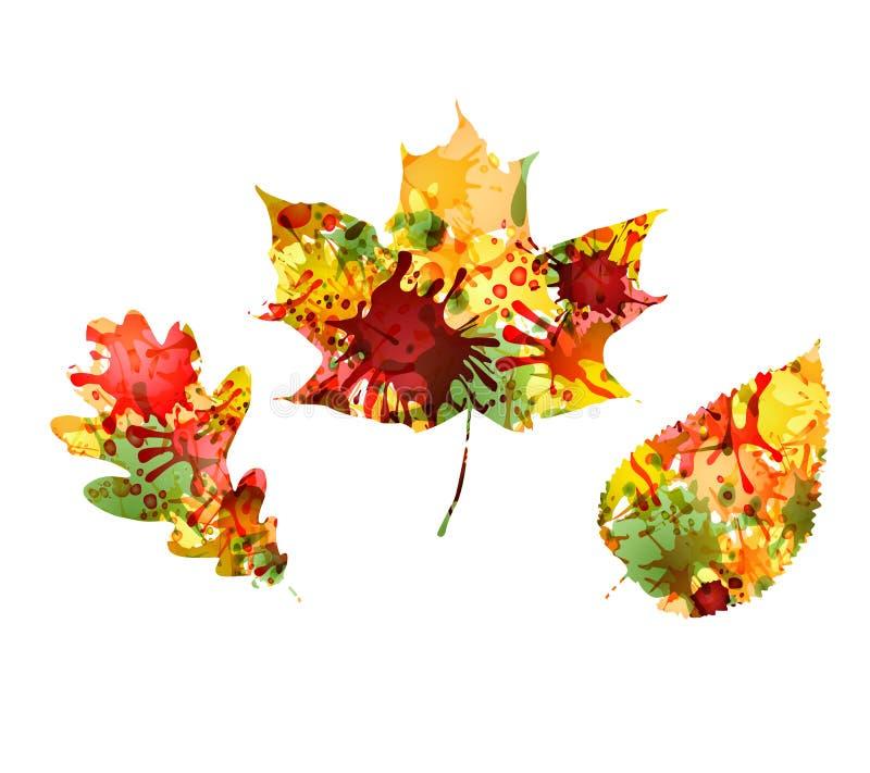 Jesień projekt kolorowi liście ilustracji